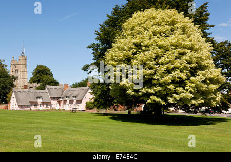 Cavendish village green, Suffolk. UK - Stock Photo