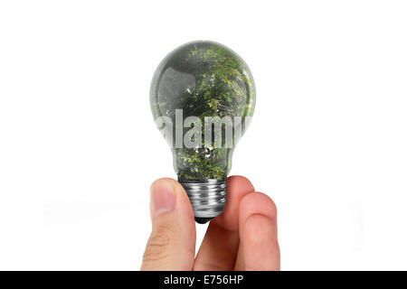 Hand holding light bulb with tree inside,  isolated on white background. - Stock Photo
