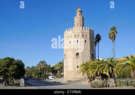 Torre del Oro, Gold Tower, maritime museum, promenade, Seville, Andalusia, Spain - Stock Photo