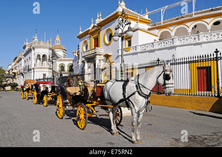 Horse-drawn carriages, Plaza de Toros de la Maestranza, bullring, museum, Seville, Andalusia, Spain - Stock Photo