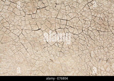 environmental concept, Water shortage and drought Dry cracked mud - Stock Photo