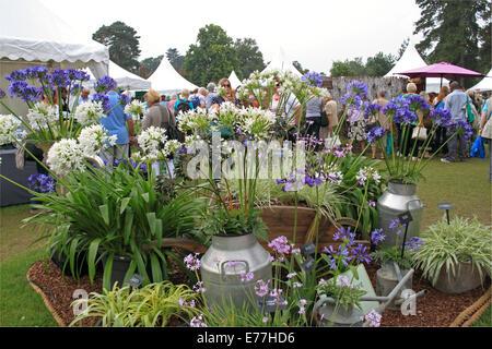 RHS Garden Wisley Flower Show, 2nd-7th September 2014, Surrey, England, Great Britain, United Kingdom, UK, Europe - Stock Photo