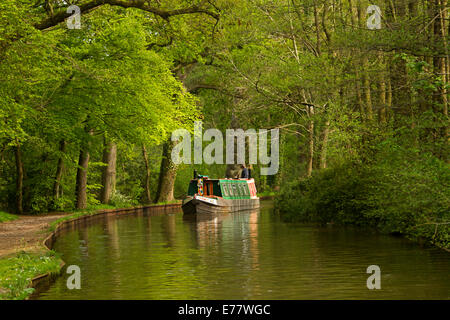 Traditional narrowboat on Llangollen canal in Wales passing through deciduous woodlands with dense emerald green - Stock Photo