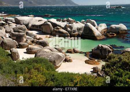 Boulders Beach near Simon's Town, Cape Town, Western Cape, South Africa - Stock Photo