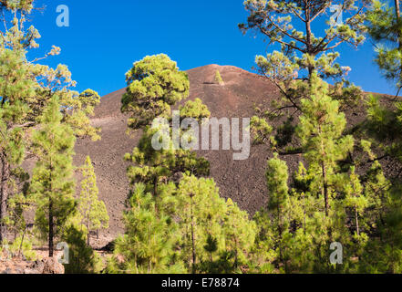 Montana Boca Cangrejo, a volcano in Tenerife, which erupted in 1492 and was seen by Columbus as he prepared to sail to America
