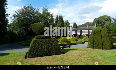 Plas Newydd and topiary, home of the Ladies of Llangollen in Denbighshire North Wales UK Great Britain   KATHY DEWITT - Stock Photo