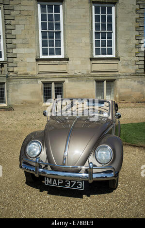 Beautifully maintained bronze coloured classic Volkswagen Beetle cabriolet car. - Stock Photo