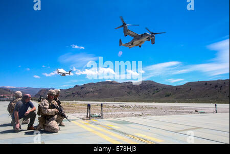 U.S. Marines with Foxtrot Company, 2nd Battalion, 7th Marine Regiment prepare to escort civilian personnel to board MV-22B Osprey tiltrotor aircraft Aug. 13, 2014, during a tactical noncombatant evacuation training mission as part of Large Scale Exercise