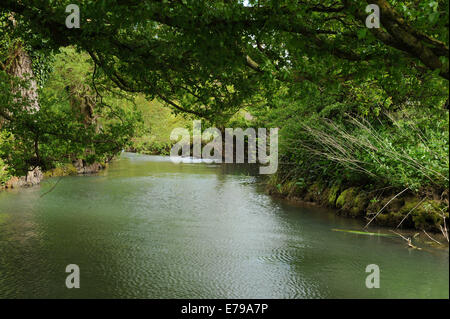 A rural river landscape near Malmesbury in the Cotswolds, Wiltshire, England, UK - Stock Photo