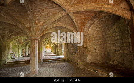 Spectacular and ornate arched vaulted ceiling and supporting pillars at ruins of historic Lanercost priory  in Cumbria - Stock Photo