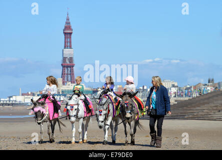 Children enjoying traditional donkey rides on Blackpool beach with iconic Blackpool Tower in the background - Stock Photo