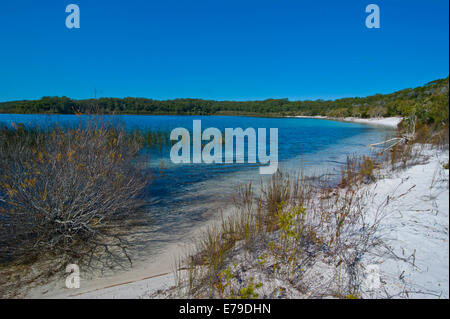 McKenzie Lake, Fraser Island, Queensland, Australia - Stock Photo