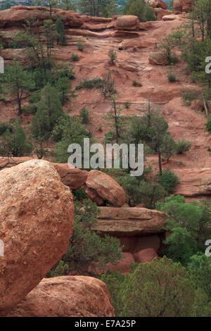 Red Boulders and Green trees in Garden of the Gods Colorado - Stock Photo