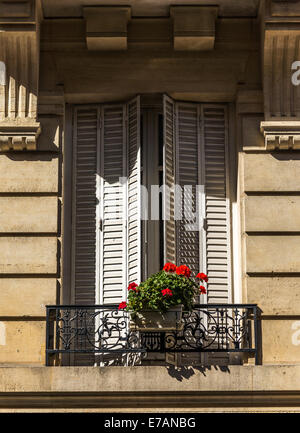 Partially open shutters cover a window while a red geranium basks in the sunlight hanging over a wrought iron railing. - Stock Photo