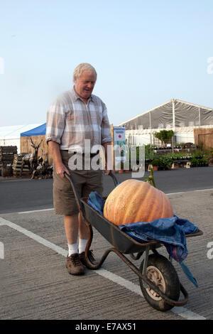 Harrogate, Yorkshire, UK. 11th Sept, 2014.  Andrew Jarrow wheeling his Giant Pumpkin atd the Harrogate Annual Autumn - Stock Photo
