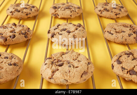 closeup of chocolate biscuit cookies on rack - Stock Photo