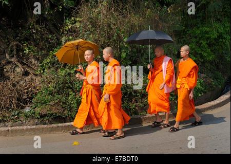 Buddhist monks wearing orange robes with umbrellas walking along a road, Luang Prabang, Laos - Stock Photo