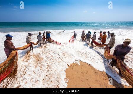 Fishermen, day labourers, hauling in a net on the beach, near Kottegoda, Southern Province, Sri Lanka - Stock Photo