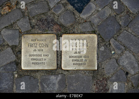 Brass plaques or 'Stolpersteine' commemorating former Jewish inhabitants of house in Stralsund, Germany. - Stock Photo