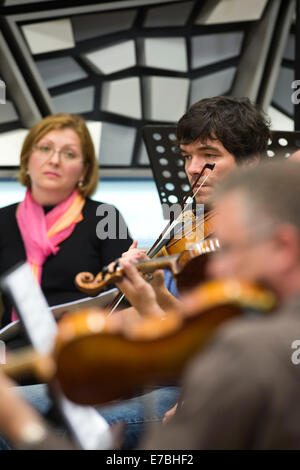 Prague, Czech Republic. 12th Sep, 2014. Prague radio symphony orchestra pictured during the test of the Antonin - Stock Photo