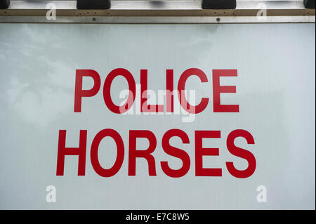 Police horse detail - Stock Photo