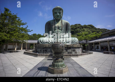 Kamakura, Japan - August 7, 2014: The Great Buddha of Kamakura (Kamakura Daibutsu) is a bronze statue of Amida Buddha, - Stock Photo