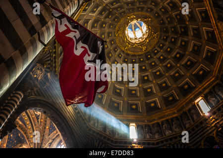 Dome of the Cathedral of Siena, Cattedrale di Santa Maria Assunta, interior view, Siena, Tuscany, Italy - Stock Photo