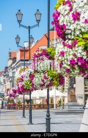 Flower arrangement on street lamp in the background the market square in Bialystok, Poland. - Stock Photo