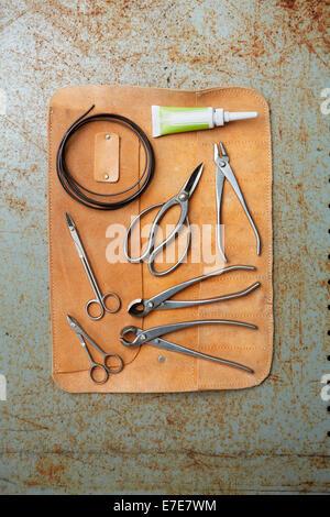 Bonsai tree pruning equipment - Stock Photo
