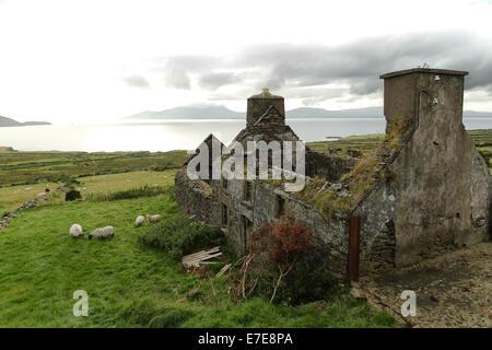 Ruined Irish cottage