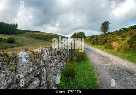 Country lane leading to Wistman's Wood at Two Bridges on Dartmoor National Park in Devon - Stock Photo