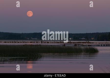 summer night super moon - Stock Photo