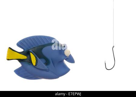 A close up shot of a tropical toy fish - Stock Photo