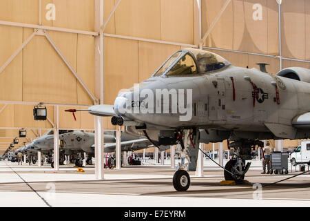 U.S. Air Force A-10 Thunderbolt II aircraft sit in the sun shelters at Davis-Monthan Air Force Base, Arizona. - Stock Photo