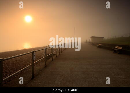 Foggy sunrise along minster leas on the isle of sheppey