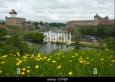 Hermann Castle, left, and Ivangorod Fortress on the Russian side, right, Narva, Estonia, Baltic States - Stock Photo