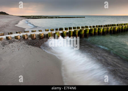 Groynes on the Baltic Coast, Zingst, Fischland-Darß-Zingst, Mecklenburg-West Pomerania, Germany - Stock Photo