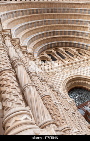 Detail of the main entrance of the Natural History Museum, London, England - Stock Photo