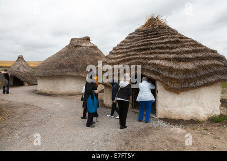 Tourist visitors view recreated Neolithic stone age hut / stoneage huts & thatched roof / roofs Exhibition Visitor - Stock Photo