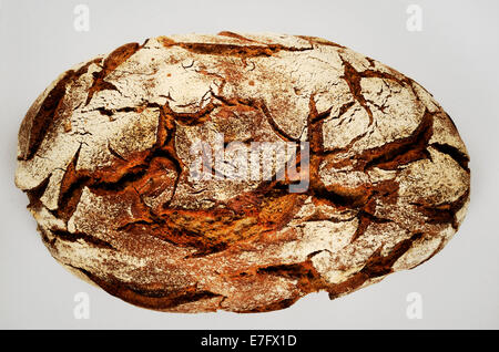 a loaf of rye bread over white - Stock Photo