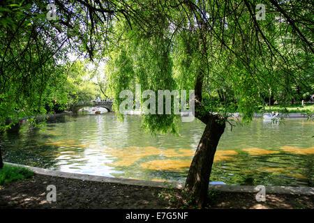 Lake and boat in Cismigiu park Bucharest, Romania - Stock Photo