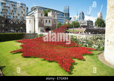 Tower of London Poppies, moat: with a sea of ceramic poppies in remembrance of WW1, London, England, UK. Art installation - Stock Photo