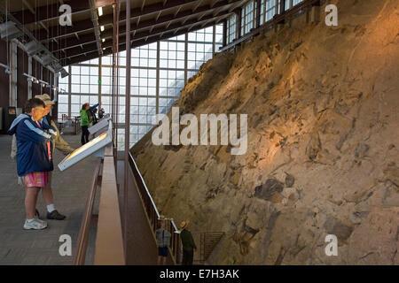 Jensen, Utah - Visitors view dinosaur bones in the Quarry Exhibit Hall at Dinosaur National Monument. - Stock Photo