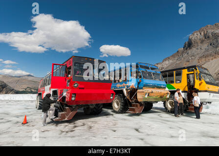 Elk203-7437 Canada, Alberta, Jasper National Park, Columbia Icefield, Athabasca Glacier, ice tour coaches - Stock Photo