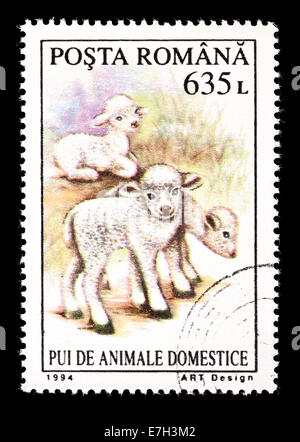 Postage stamp from Romania depicting lambs. - Stock Photo