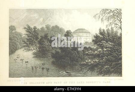 The Coliseum and Part of the Lake, Regent's Park - Shepherd, Metropolitan Improvements (1828), p205 - Stock Photo