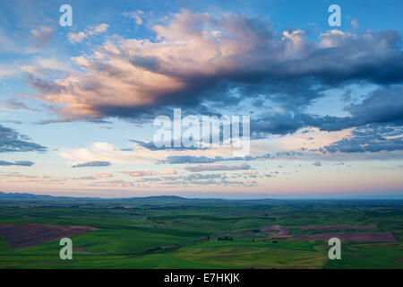 Farmland in the Palouse region of Washington State, view from Steptoe Butte State Park, USA - Stock Photo