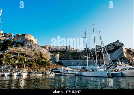 Europe, France, Corsica, Bonifacio. Sailboats in a Marina front of the ramparts. - Stock Photo
