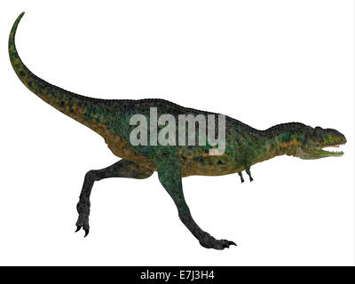 Aucasaurus was a predatory dinosaur from the Cretaceous Period in Argentina and a close relative of Carnotaurus. - Stock Photo