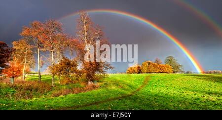 Spectacular Double Rainbow Over Autumn Copse, Near Alnwick, Northumberland, England, UK - Stock Photo